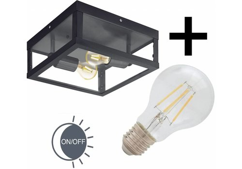 Eglo Buitenlamp Alamonte plafond zwart dag-nacht sensor