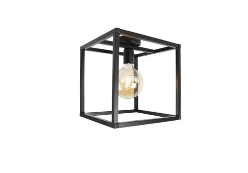 Qazqa Plafondlamp Cage