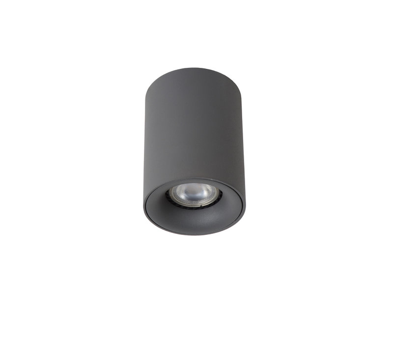 BENTOO-LED Spot GU10/5Wincl Ø8 H11cm Grijs