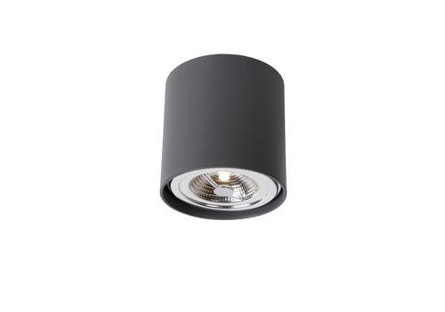 Lucide DIALO-LED Spot AR111 12Wincl. Ø12 H12cm Grijs