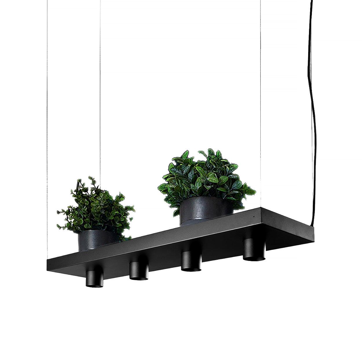 Nowodvorski Hanglamp Plant 4 lichts L 80 cm B 24 cm zwart