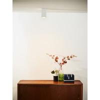 DELTO LED Spot Vierk. GU10/5W DTW  Wit