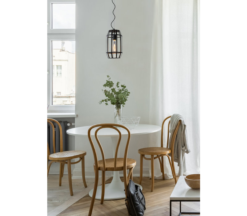 FERN Hanglamp E27/60W Ø20cm H35cm Zwart /Glas