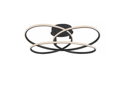 Paul Neuhaus Plafondlamp Node Ø 60 cm zwart