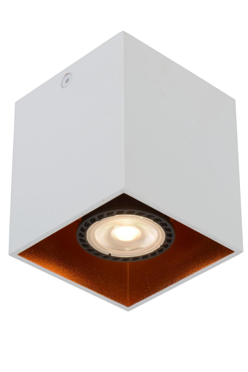 Lucide BIDO Plafondspot-Wit-1xGU10-50W-Alumin.