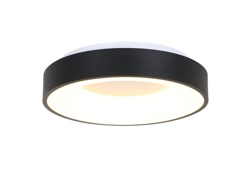 Steinhauer Plafondlamp Ringlede Ø 48 cm 2563 zwart