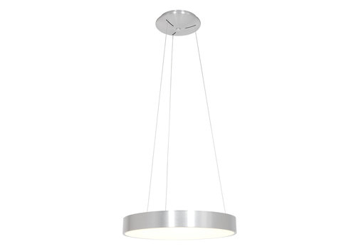 Steinhauer Hanglamp Ringlede Ø 48 cm 2695 zilver