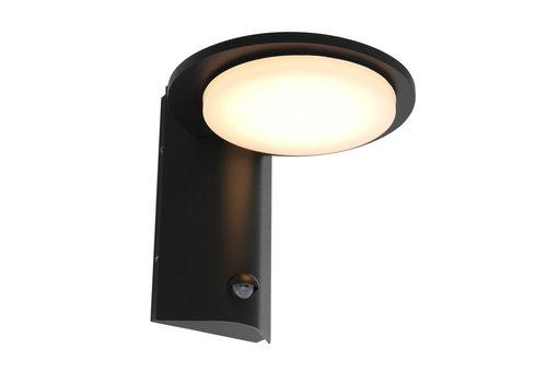 Steinhauer Buitenlamp Luzon incl. LED 1 lichts dag nacht sensor zwart