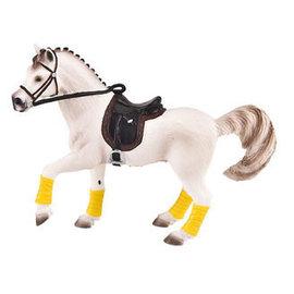 Paard Arabier Merrie
