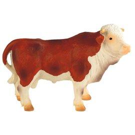 Dieren Stier