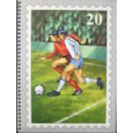 PZ Einsteckbuch Fussball 20