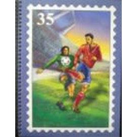 PZ Einsteckbuch Fussball 35