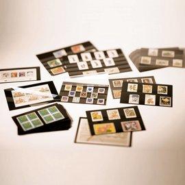 Leuchtturm Einsteckkarten 3 Streifen PS - 100 Stück