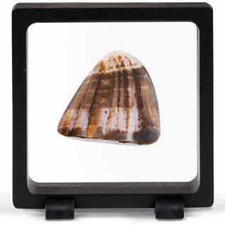 Leuchtturm Magic Frame 90