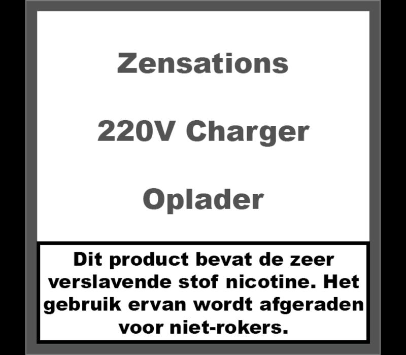 220V Charger