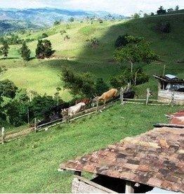 Caffè Dono - Colombia Supremo