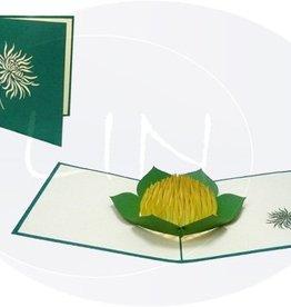 Pop up greeting card, chrysanthemum (var 2)
