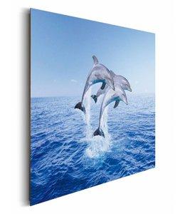 Schilderij Dolfijnen
