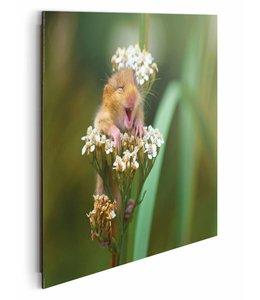Schilderij Lachende muis