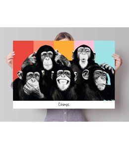 Poster Apen popart