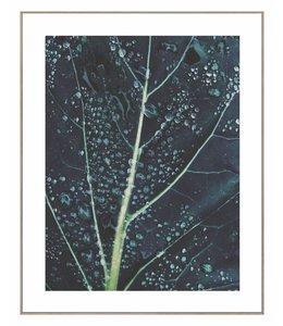 Schilderij Blad met regendruppels