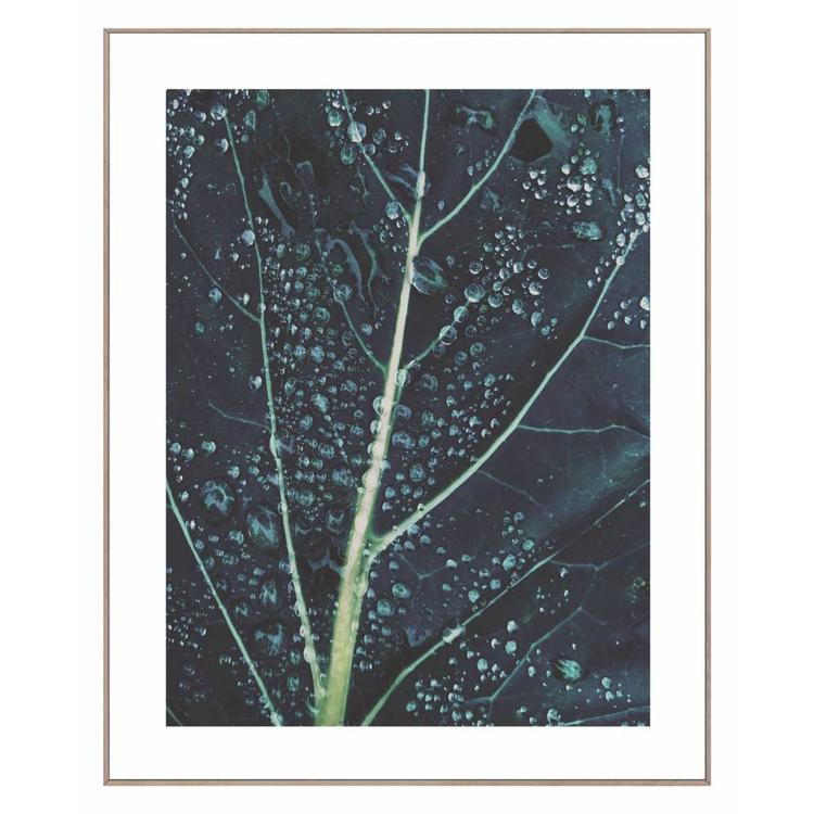Blad met regendruppels  - Schilderij 50 x 40 cm