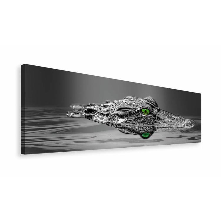 Alligator - Schilderij 118 x 40 cm