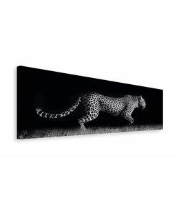 Schilderij Sluipend Luipaard