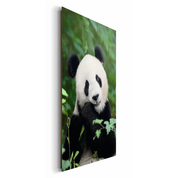 Jungle Panda - Schilderij 60 x 90 cm