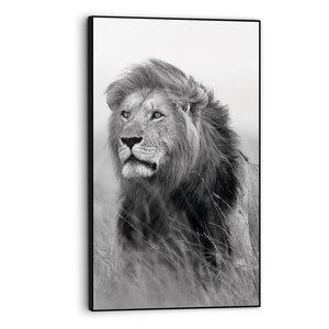 Art Frame Leeuw op Savanne