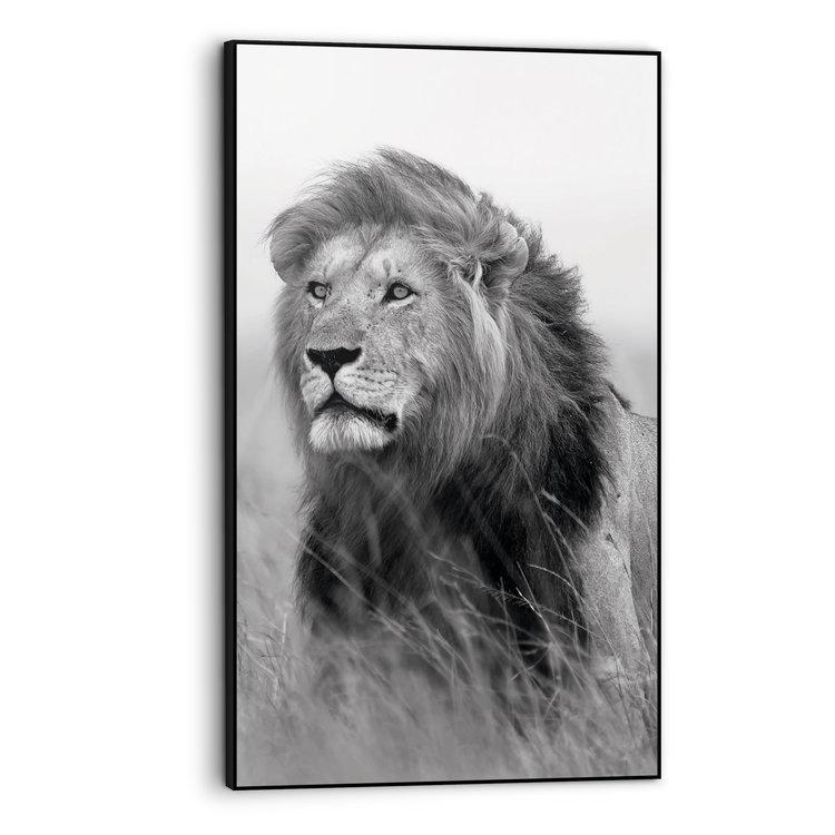 Leeuw op Savanne Dierenkop - Print in baklijst Art Frame 70 x 118 cm