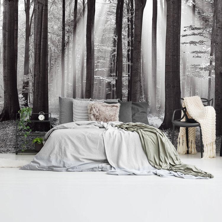 Zonlicht in loofbos Herfst - zonnestralen - rust  - Fotobehang 384 x 260 cm Vlies