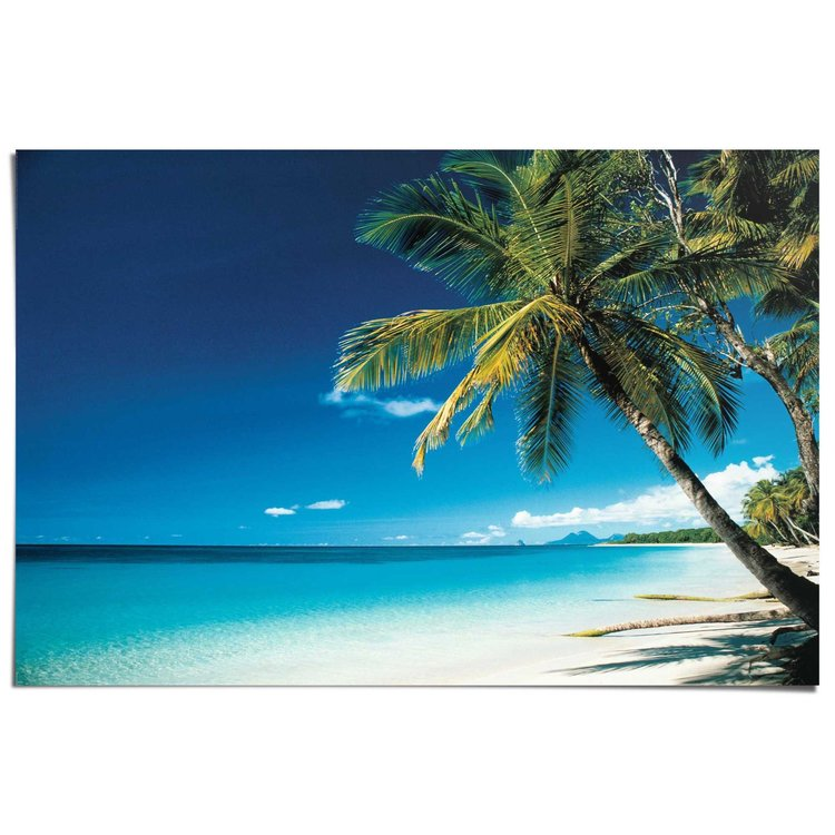Strand palmen - Poster 91.5 x 61 cm