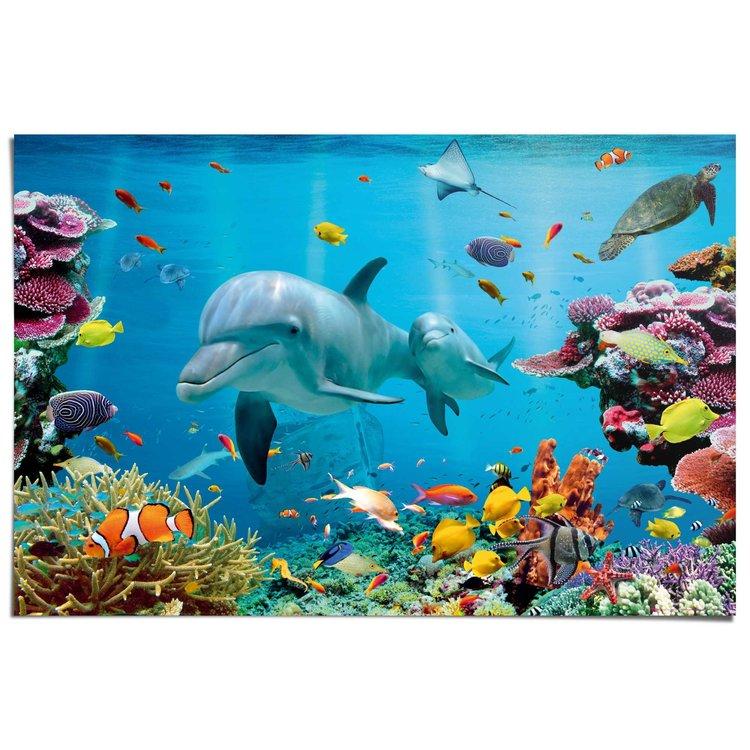 Dolfijnen  - Poster 91.5 x 61 cm