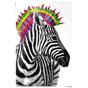 Poster Zebra punker