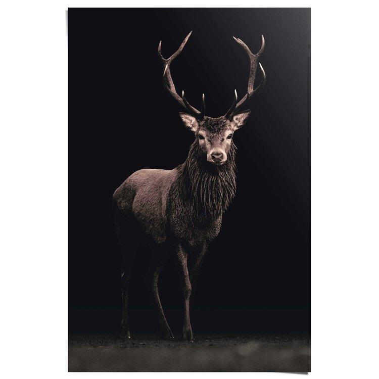 Hert zwart  - Poster 61 x 91.5 cm
