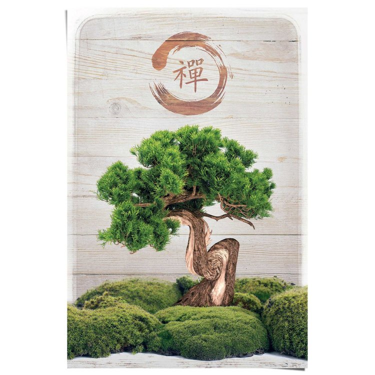 Bonsai boompje  - Poster 61 x 91.5 cm