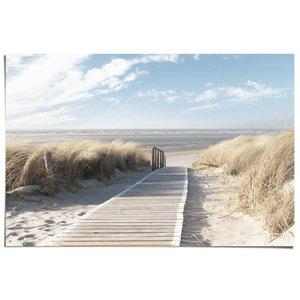 Poster Duinpad naar het strand