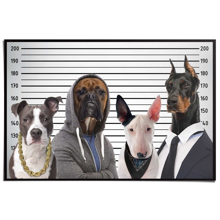 Most Wanted Dogs  - Poster 91.5 x 61 cm