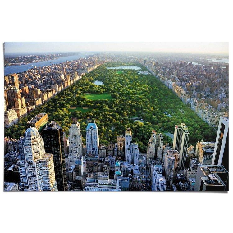 Central Park  - Poster 91.5 x 61 cm