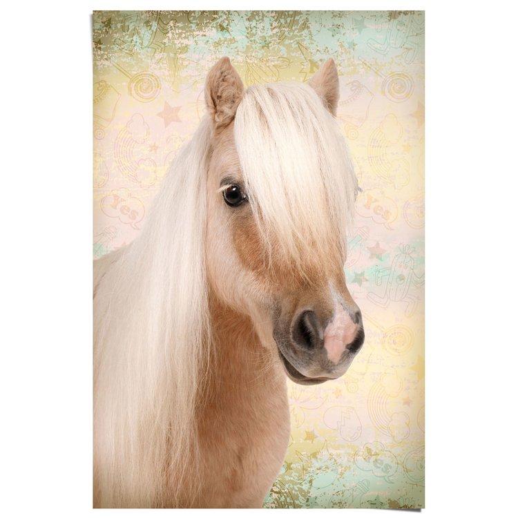 Schattige Pony - Poster 61 x 91.5 cm