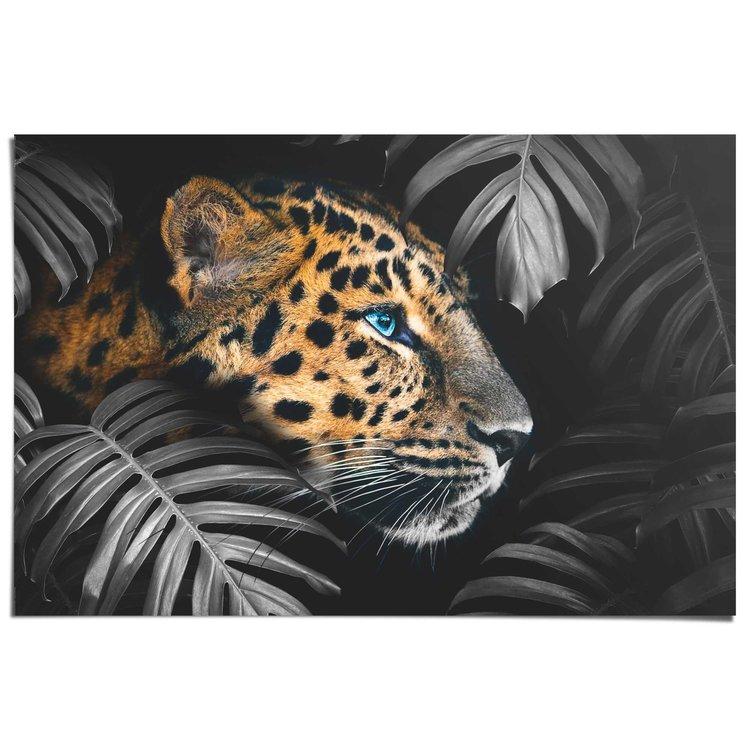 Luipaard In de jungle - Poster 91.5 x 61 cm