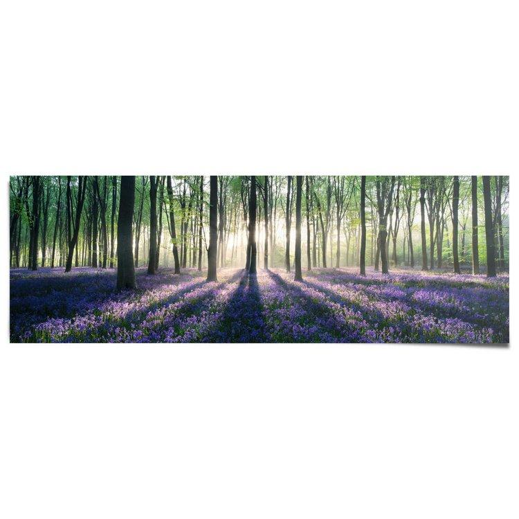 Bos in voorjaar met zonnestralen  - Poster 158 x 53 cm