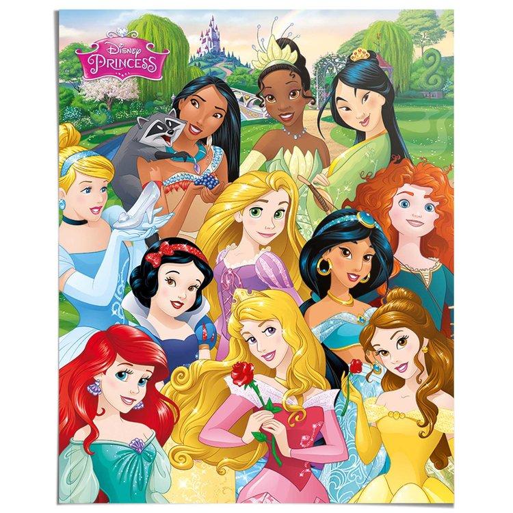 Disney Princess - Poster 40 x 50 cm