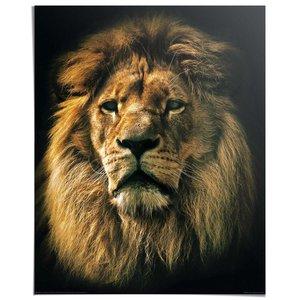 Poster Leeuw Kop