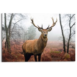 Schilderij Hert in herfstbos