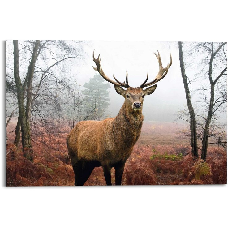 Hert in herfstbos  - Schilderij 90 x 60 cm