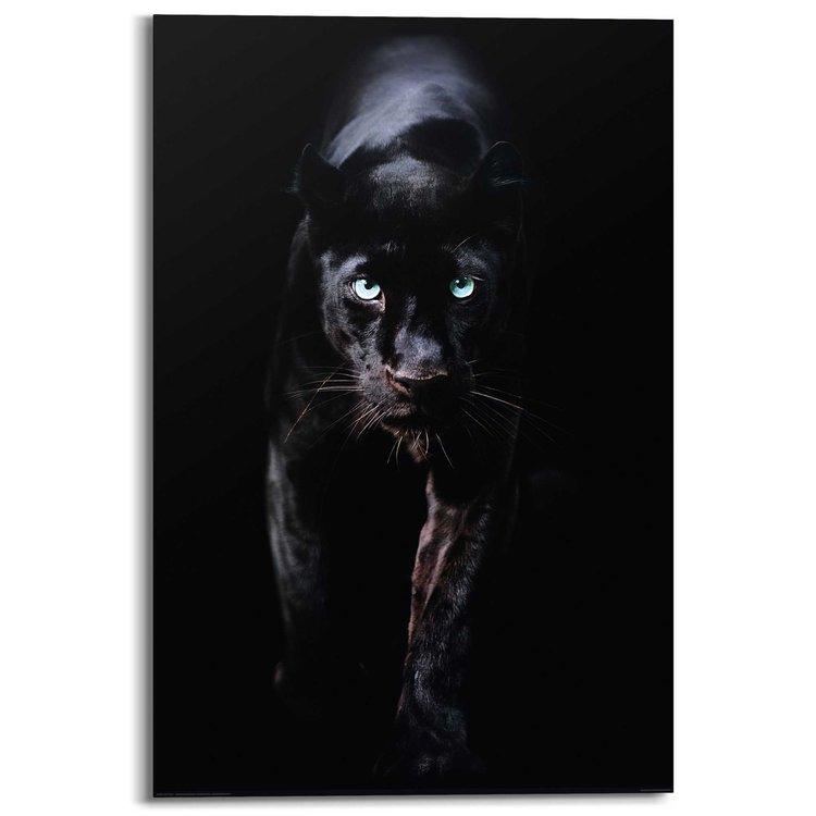 Zwarte Panter  - Schilderij 60 x 90 cm