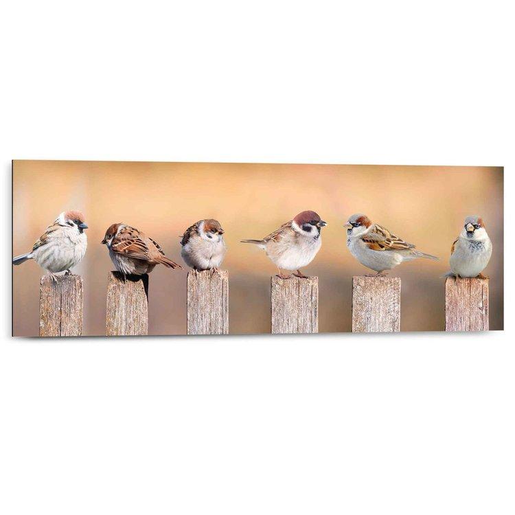 Vogels Mussen - Schilderij 90 x 30 cm