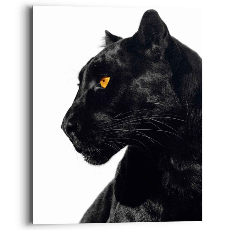 Zwarte Panter En profiel - Dierenportret - Schilderij Deco Panel MDF 40 x 50 cm